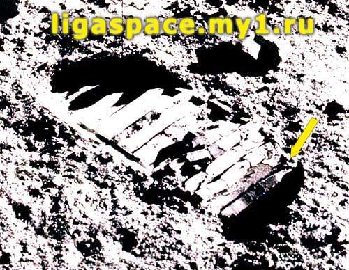 Астронавт Баз Элдрин раздавил таракана во время прогулки по Луне