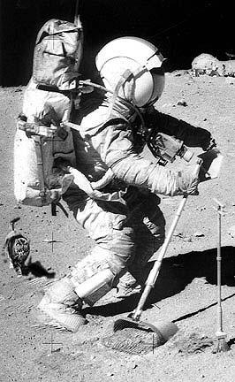Кошка, гуляющая рядом с астронавтом Аполлона